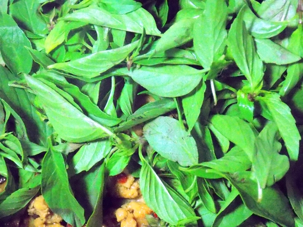 Thai Basil with Mince Pork Stir-Fry 5